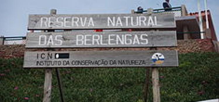 The Berlenga
